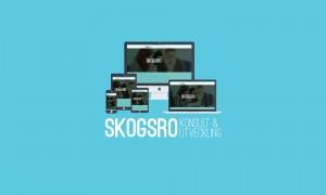 Responsiv hemsida på olika enheter